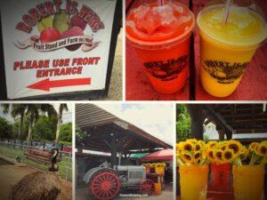 Robert is here fruit stand, Homestead Florida